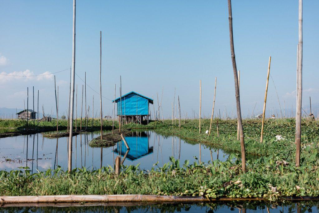 jardin flottant lac inle