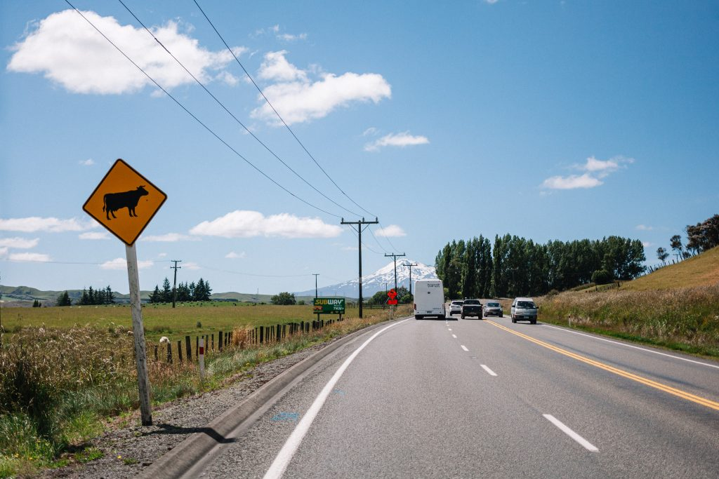panneau route nouvelle zelande