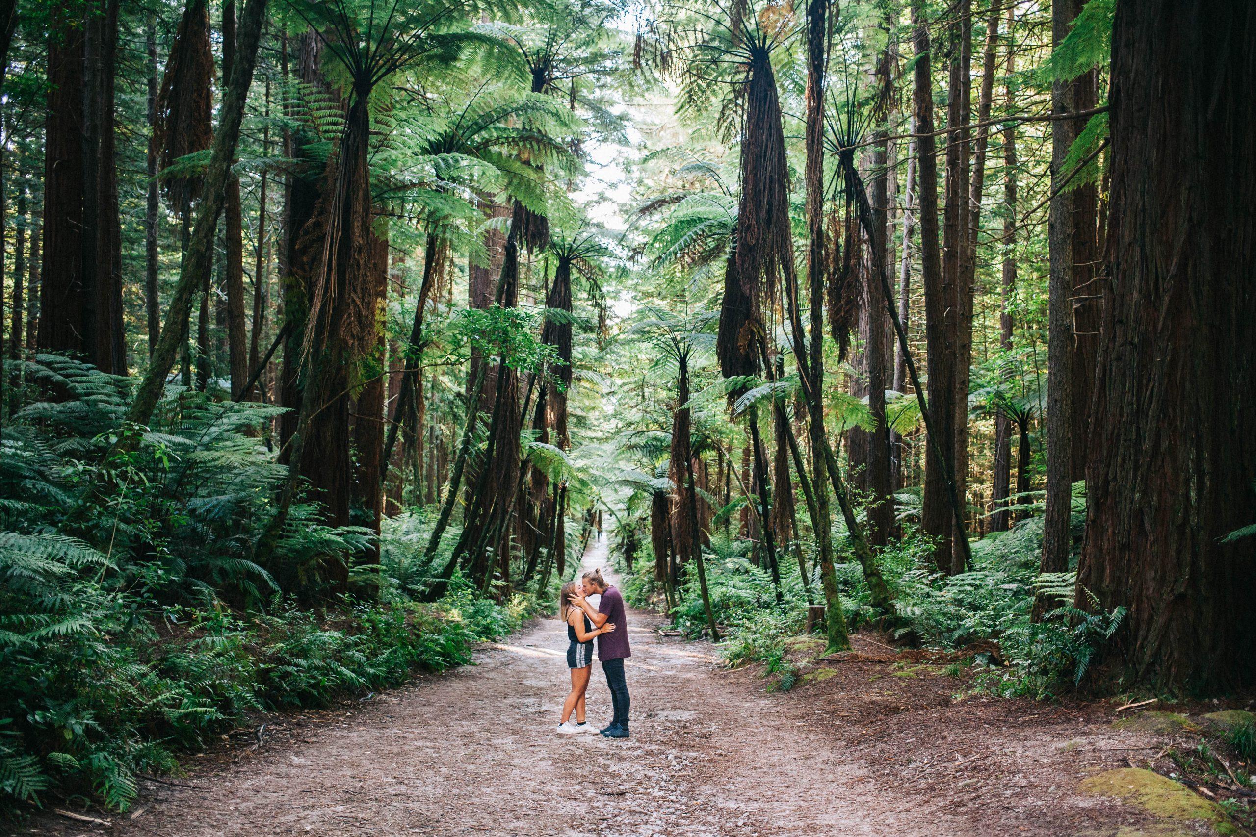 couple forêt de Whakarewarewa